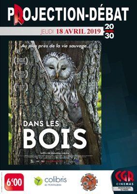 CINÉ-DÉBAT DANS LES BOIS #Montauban @ Cinéma CGR Le Paris