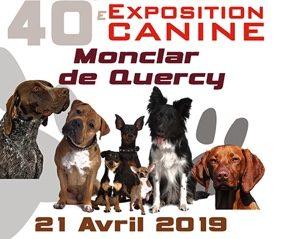 EXPOSITION CANINE NATIONALE #Monclar-de-Quercy @ Esplanade du Lac