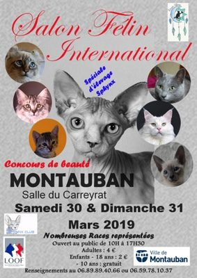 EXPOSITION FÉLINE INTERNATIONALE #Montauban @ Salle du Carreyrat