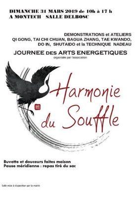 JOURNÉE DES ARTS ENERGÉTIQUES #Montech @ Salle Delbosc
