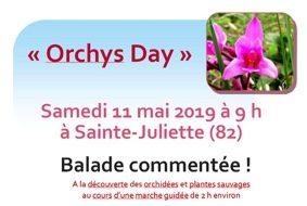 A LA DECOUVERTE DES ORCHIDEES SAUVAGES #Sainte-Juliette @ Mairie