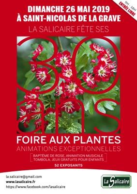 51ème FOIRE AUX PLANTES RARES ET DE COLLECTION #Saint-Nicolas-de-la-Grave @ Centre-ville