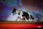 cabaret-equestre-lafitte