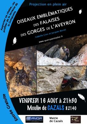 OISEAUX EMBLEMATIQUES DES GORGES DE L'AVEYRON #Cazals @ au moulin