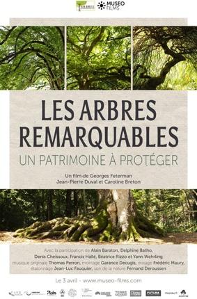 CINE-DEBAT LES ARBRES REMARQUABLES #Caussade @ CINEMA DE CAUSSADE