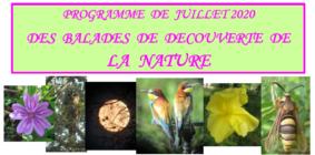 BALADE DE DÉCOUVERTE DE LA NATURE #Montaigu-de-Quercy @ autour de l'étang