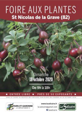 FOIRE AUX PLANTES RARES ET DE COLLECTION #Saint-Nicolas-de-la-Grave
