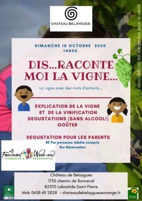 DIS RACONTE MOI LA VIGNE... #Lacourt-Saint-Pierre @ Chateau de Belaygues
