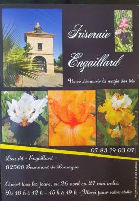 PORTES OUVERTES #Beaumont-de-Lomagne @ IRISERAIE ENGAILLARD