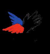 PORTES OUVERTES & GRANDE BRADERIE SOLIDAIRE #Montauban @ Secours populaire
