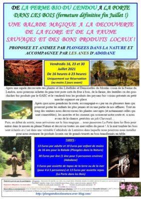 une-balade-magique-a-la-decouverte-de-la-flore-et-de-la-faune-sauvages-et-des-bons-produits-locaux-sainte-juliette